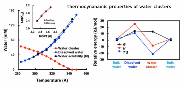 thermodynamics of ionized water clusters